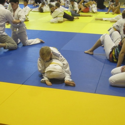 """Dia Olímpic 2017 - Judo • <a style=""""font-size:0.8em;"""" href=""""http://www.flickr.com/photos/150577621@N02/35235488432/"""" target=""""_blank"""">View on Flickr</a>"""